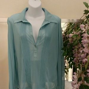 New York & Co Pleated Sheer Sexy Blouse